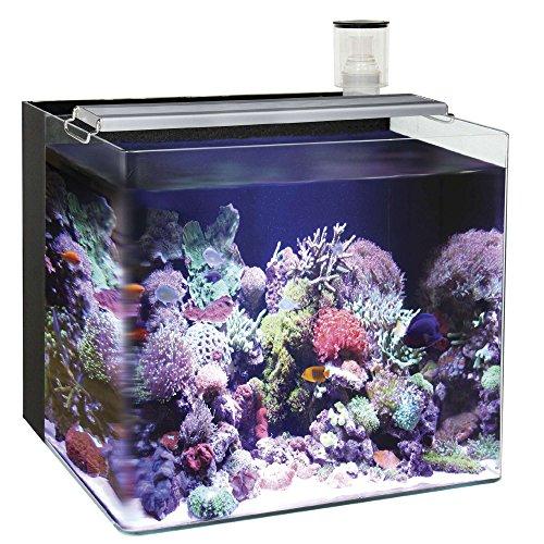 Ocean Free AT641A Nano...