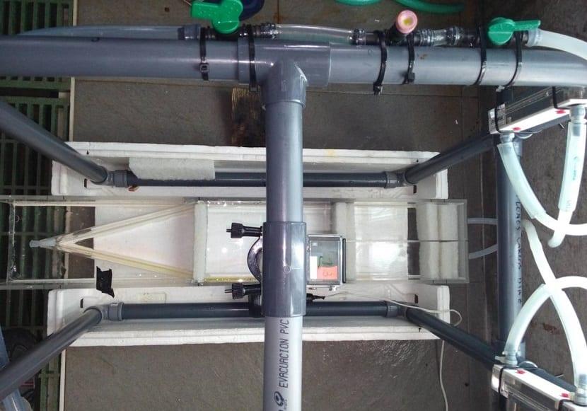 distintos sistemas de flujo de agua para comprobar el comportamiento de los peces tordo por el olor del agua