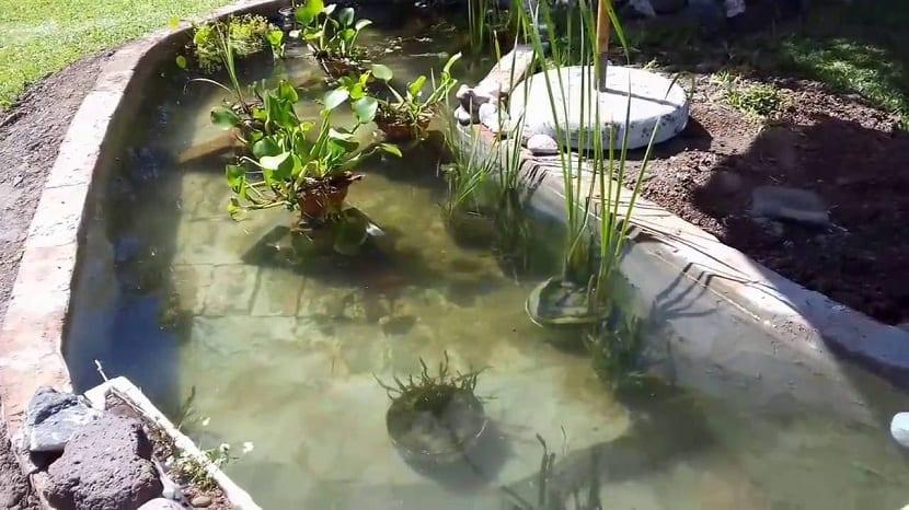 Necesidades para la construcción de estanques