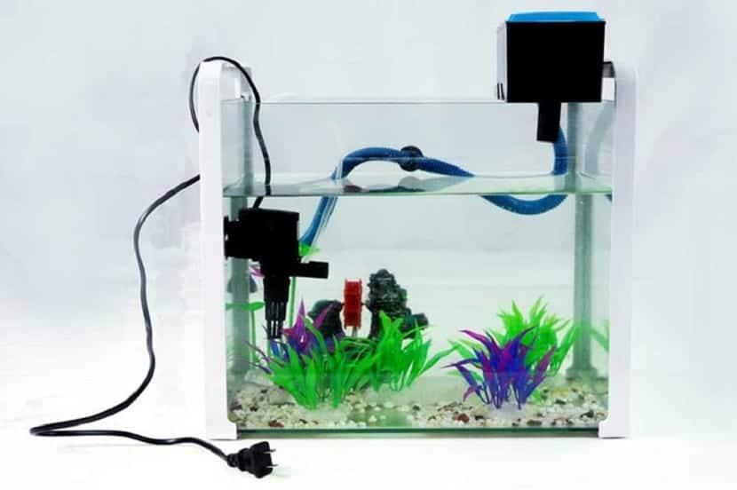 filtros de acuario