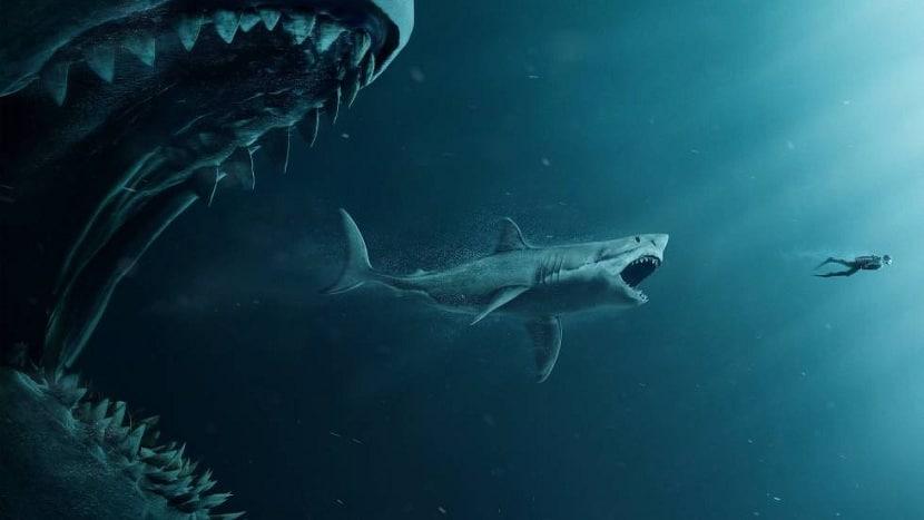 Tiburon mayor