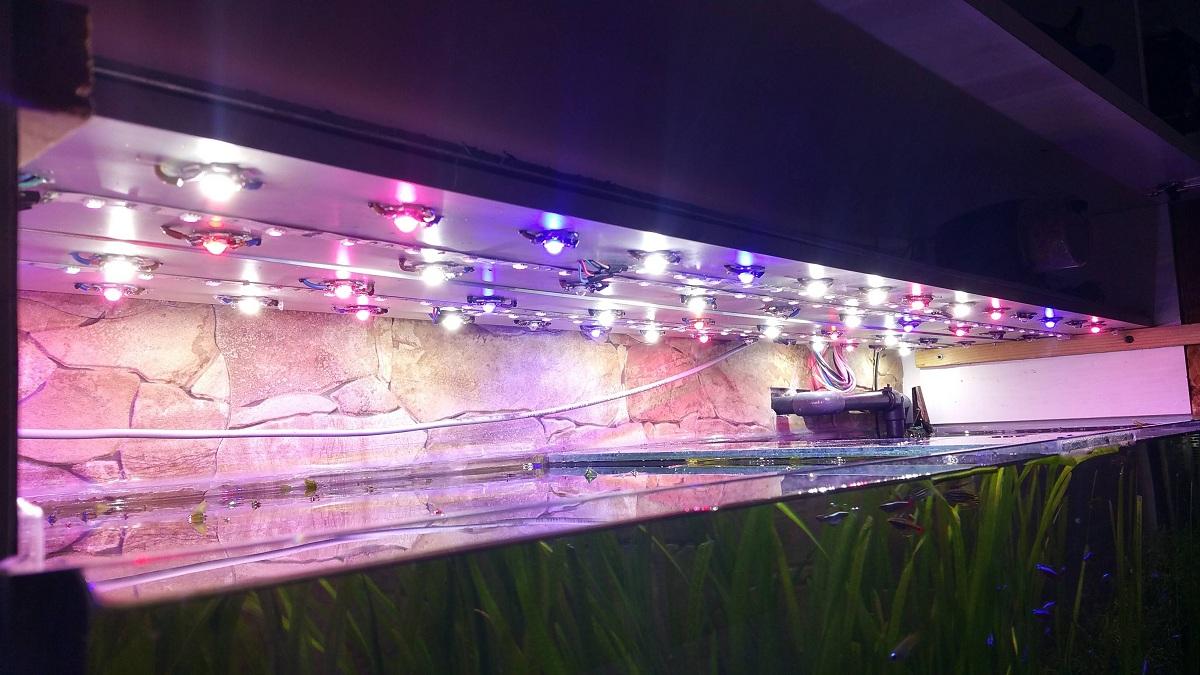 Pantallas LED para acuarios