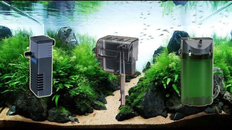 filtros de acuarios